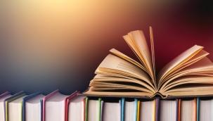Pikaresk roman nedir?